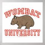 Universidad III de Wombat Poster
