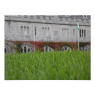 University College of Cork grass Poster