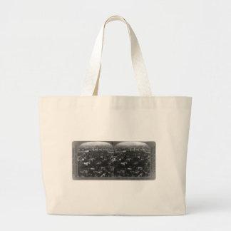 University of Texas - 1926 Bags