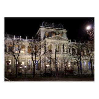 University Of Vienna Austria Large Business Card