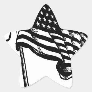 UNIVERSITY TED STATES OF AMERICA STAR STICKER
