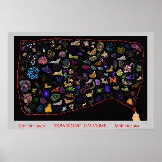 Universo de extensión póster