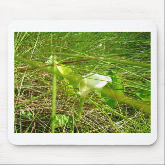 Unknown flower mouse pad