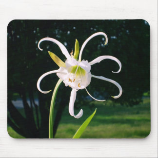 """Unknown Flower"" mousepad"