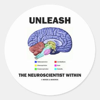 Unleash The Neuroscientist Within (Brain Anatomy) Classic Round Sticker