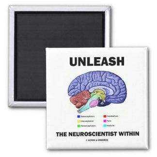 Unleash The Neuroscientist Within (Brain Anatomy) Magnet