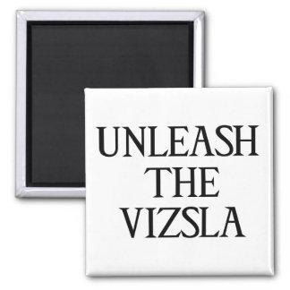 UNLEASH THE VIZSLA (Large Print) 2 Inch Square Magnet