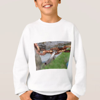 unlocked sweatshirt