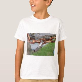 unlocked T-Shirt