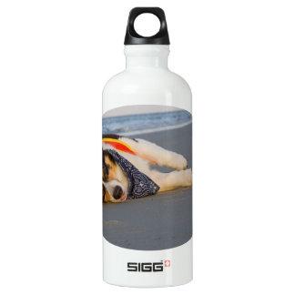 Unnecessary Roughness Aluminum Water Bottle