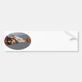 Unnecessary Roughness Bumper Sticker