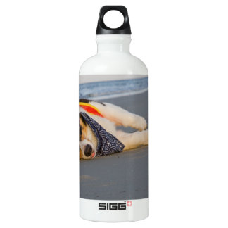 Unnecessary Roughness Water Bottle