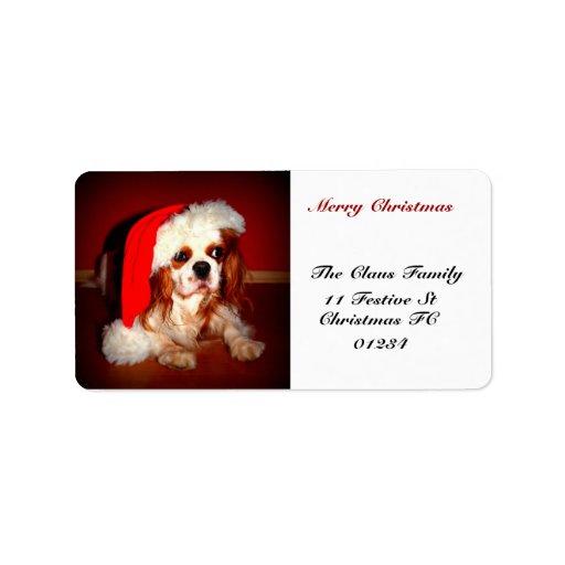 Uno mismo del perro de aguas del navidad dirigido etiqueta de dirección