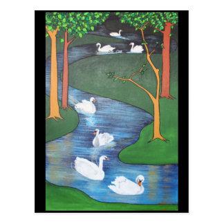 Uno-Natación de siete cisnes Postal