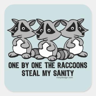 Uno por uno el diseño divertido de los mapaches pegatina cuadrada