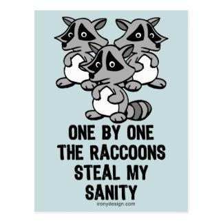 Uno por uno los mapaches tarjeta postal