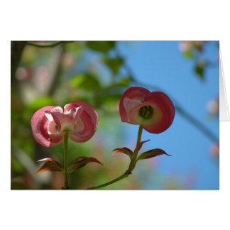 Unopened Pink Dogwood Greeting Card