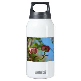 Unopened Pink Dogwood Thermos Bottle