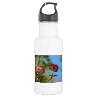 Unopened Pink Dogwood Water Bottle