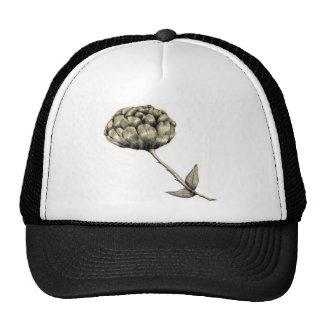 Unopened Trucker Hat