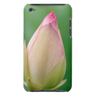 Unopened Water Lily Bulb, Durban Botanical Barely There iPod Cases