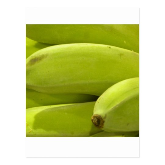 Unripe/ Young Bananas:) Postcard