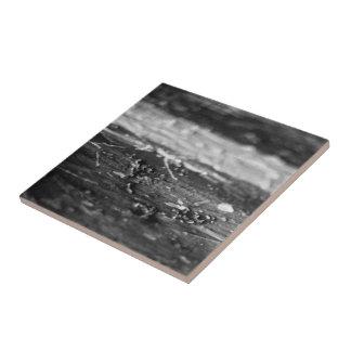 Unseen Paint Splatter Ceramic Tile