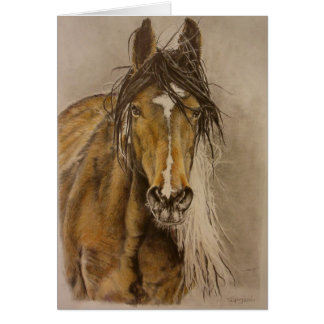 """Untamed"" wild mustang mare Greeting Card"