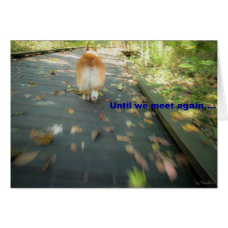 Until we meet again pet sympathy card