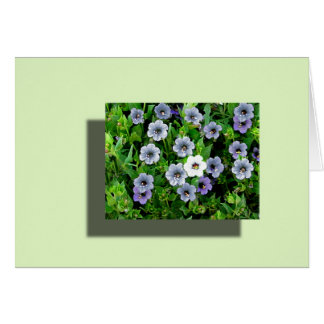 untitled forgetmenot greeting card