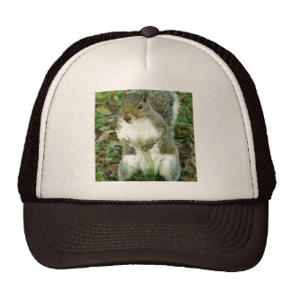 Untitled Hat