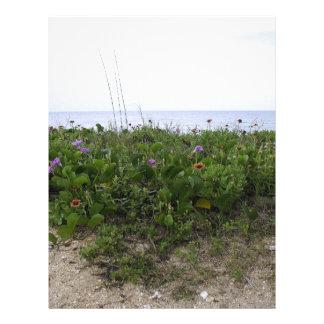 Untouched Beach Customized Letterhead