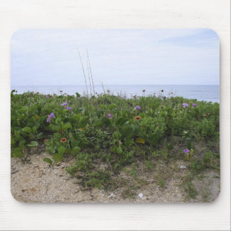 Untouched Beach Mouse Pad