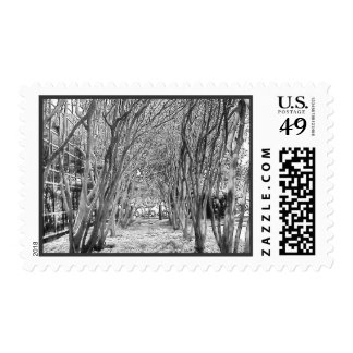 Unused Path Postage