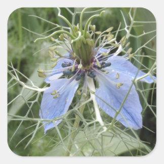 Unusual Blue Flower Square Sticker