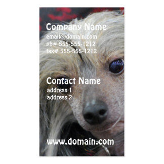 Unusual Chinese Crested Business Card Templates