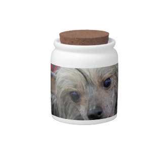 Unusual Chinese Crested Candy Jar
