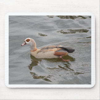 Unusual Duck Mouse Pad