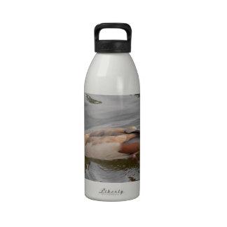 Unusual Duck Reusable Water Bottles