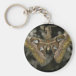 Unusual Moth Keychain