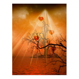 Unusual Nature Themed Abstract Photograph Card