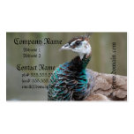 Unusual Peacock Business Card Template