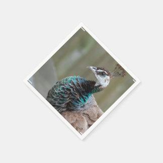 Unusual Peacock Paper Napkin