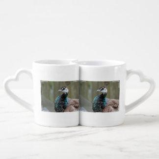 Unusual Peacock Couple Mugs
