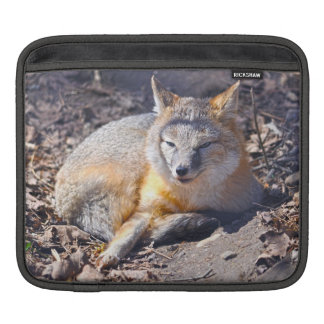 Unusual Resting Swift Fox Wildlife Photography Sleeve For iPads
