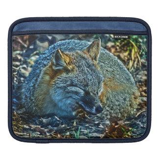 Unusual Sleeping Swift Fox Wildlife Artwork Sleeve For iPads