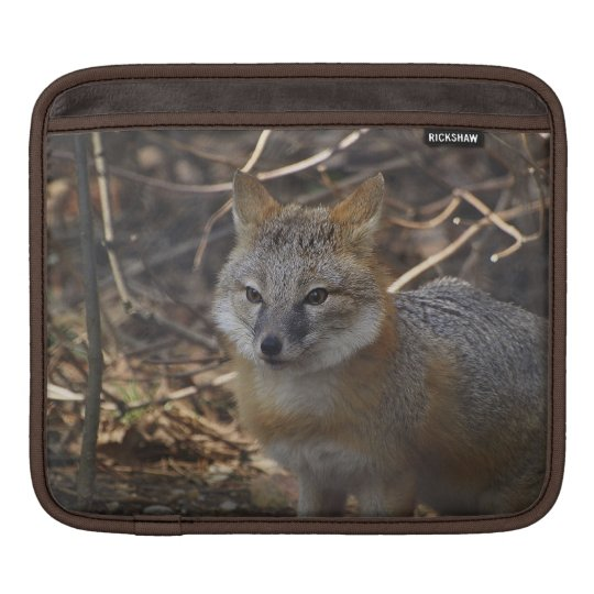Unusual Swift Fox Wildlife Photography Sleeve For iPads
