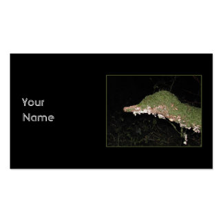 Unusual Vegetation in the Woods. Business Card