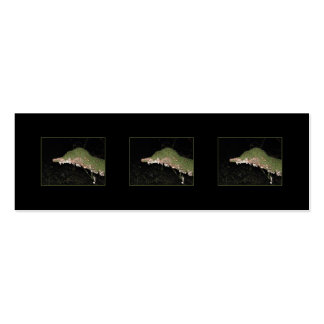 Unusual Vegetation in the Woods. Double-Sided Mini Business Cards (Pack Of 20)