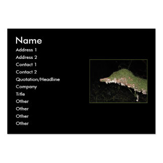 Unusual Vegetation in the Woods. Large Business Cards (Pack Of 100)